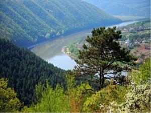 Фото: dok.znaimo.com.ua/