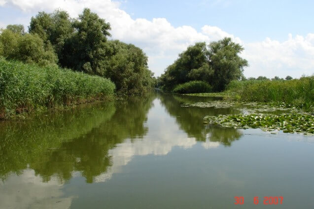 The_Danube_Delta_1